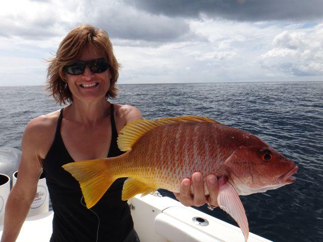 Fishing Photos, Yellow Snapper