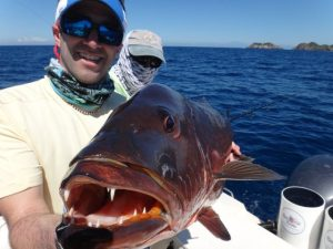Fishing Photos, Cubera Snappers