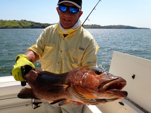 Estuary Inshore fishing in Panama