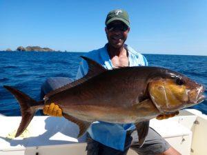 Fishing Photos, Amberjack