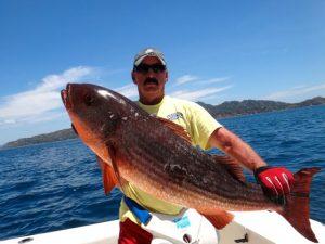 Fishing Photos, Mullet Snapper
