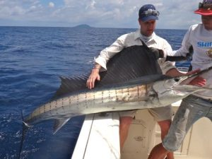 Fishing Photos, Billfish, Pacific Sailfish