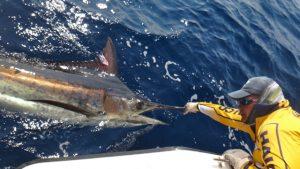Panama Fishing Report