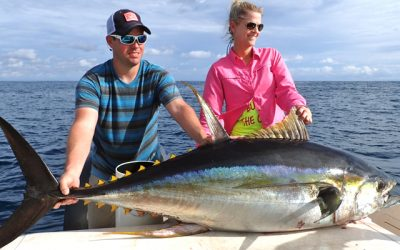 Panama Yellowfin Tuna