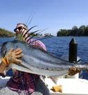 Come Fish Panama