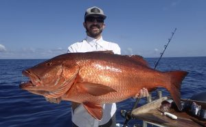 Fishing Photos, Cubera Snapper, Hosted Trips