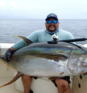 Come Fish Panama Yellowfin Tuna